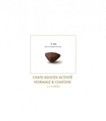 Croquettes Sans Céréales pour Chats Adultes activité normale et Chatons