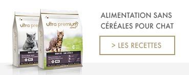 Croquettes Sans Céréales pour Chats