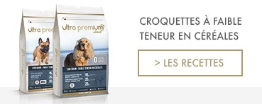 Croquettes Super Premium pour Chiens